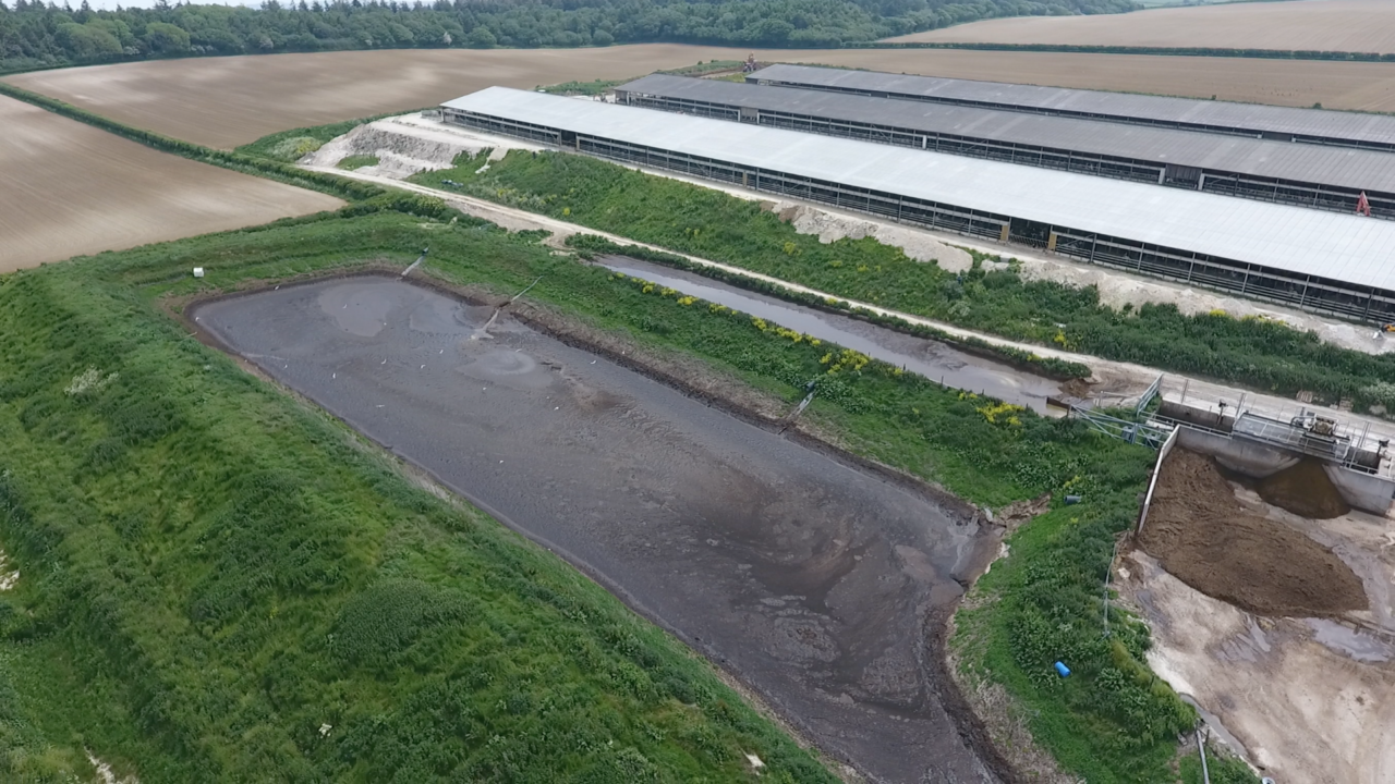 A large rectangular brown slurry lagoon next to a long farm building